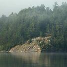 Canadian Shield Bedrock by JimSanders