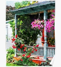Hanging Baskets and Climbing Roses Poster