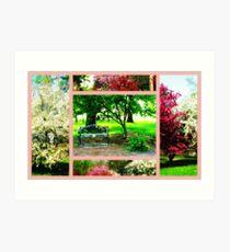 Blooming Trees In Orton Art Print