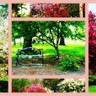 Blooming Trees In Orton by Linda Miller Gesualdo