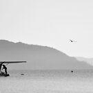 Good morning Lake Rotorua by mattslinn