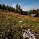 Wooden barn, Rifugio Casinei by Brendan Schoon