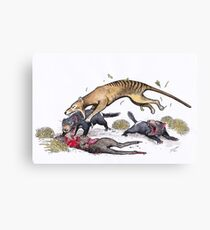 Thylacine attacking the devil Canvas Print