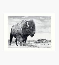 Westward Stance Art Print
