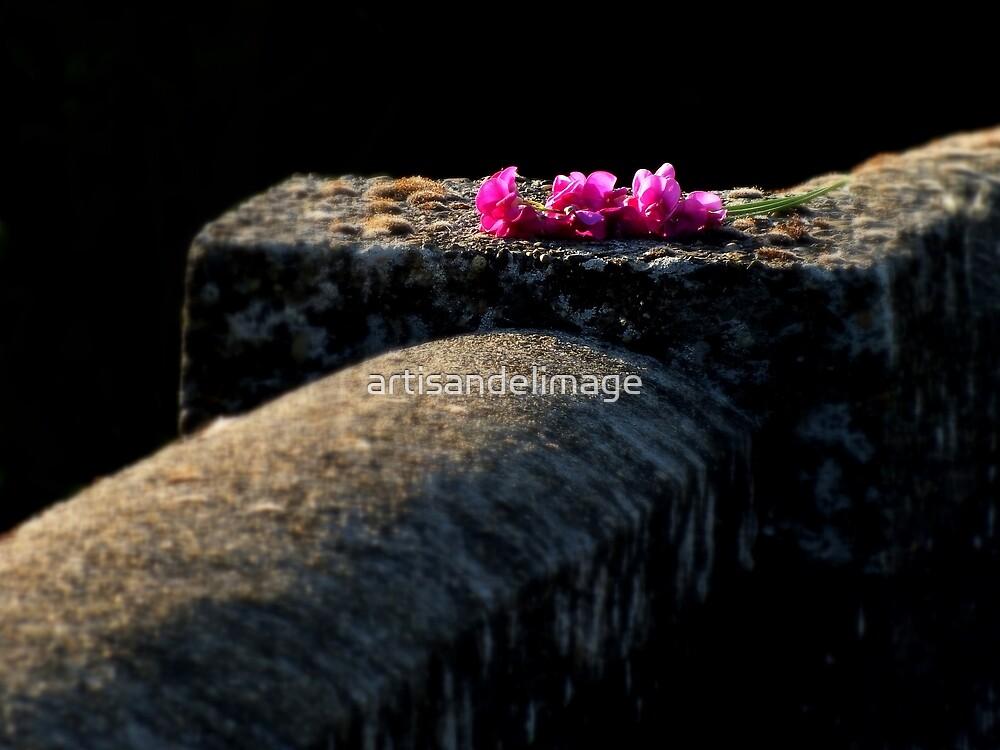 Forgotten Beauty by artisandelimage