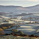 A Cumbrian Autumn by SteveMG