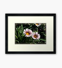Little Flowers With Active Honeybee Framed Print