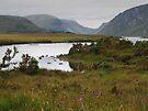 Glenveigh National Park by WatscapePhoto
