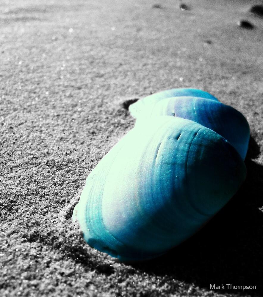 Step Shells by mark thompson