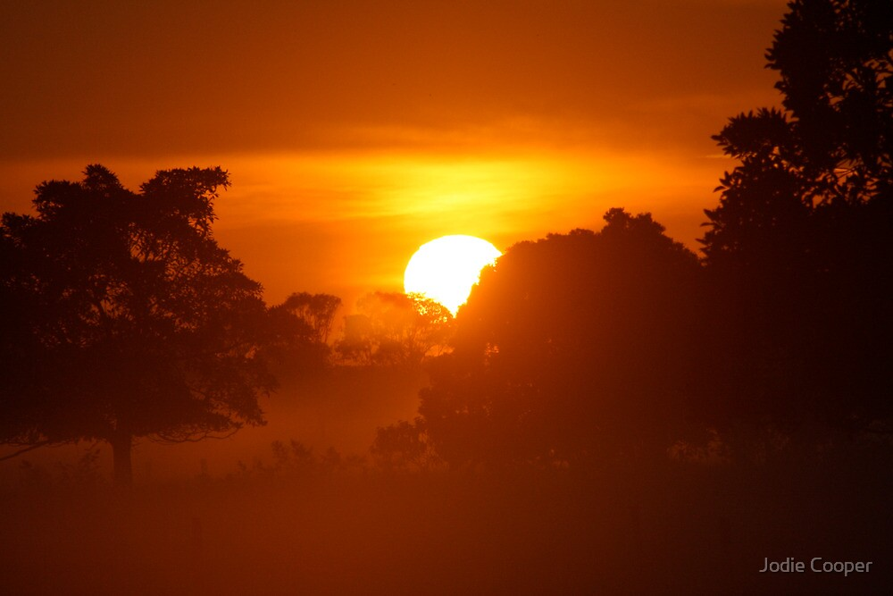 Sunrise of Oxley #5 by Jodie Cooper