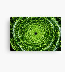 Forest whirlpool - Green light painting physiogram  Canvas Print