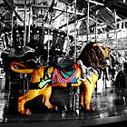 The Carrousel  by Marcia Rubin