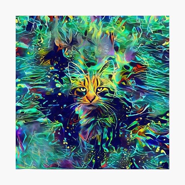 Deep Style Cat Photographic Print