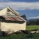 Down but not out, Bellingen by Fran53
