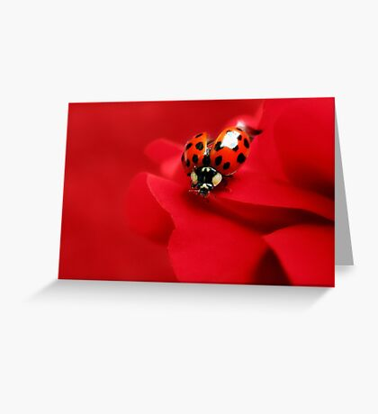 Good luck red.... Greeting Card
