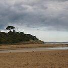 Anglesea Main Beach River End by trishringe