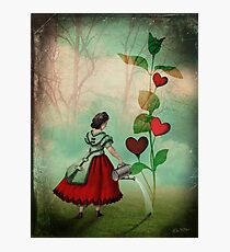 The Seeds of Love Photographic Print