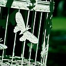 Birdcage by bouche