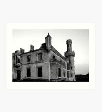 Ducketts Grove - Tullow, County Carlow Art Print