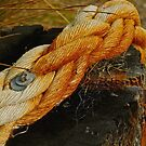 Rope by Joe Mortelliti