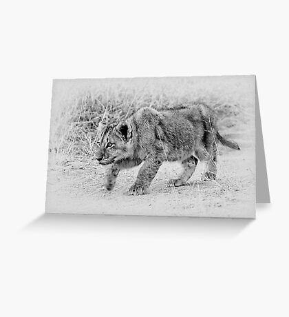 The Stalk  Greeting Card