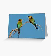 RAINBOW BEE- EATERS Greeting Card