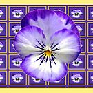 Pansy Squares by Fay Hartwell