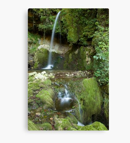 Mitovski waterfall Canvas Print