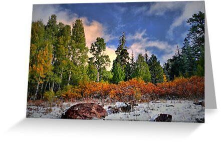 When It Gets Cold ~ Dead Horse Rim ~ by Charles & Patricia   Harkins ~ Picture Oregon