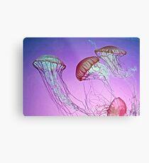 Dance of the Jellyfish Metal Print