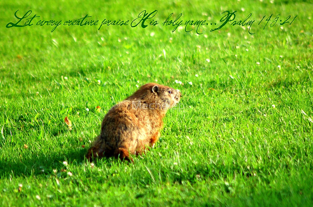 Groundhog-Let every creature praise his holy name by Mechelep