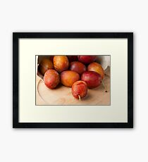Fresh Plums Framed Print