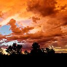 Prescott Arizona Sunset by Kgphotographics