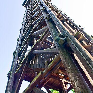 Goethe Tower Frankfurt - HDR by Rosestone