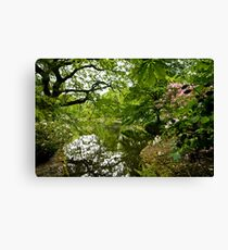 Pemberly Green - HDR Canvas Print