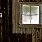 Window  by MWags