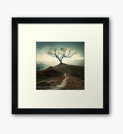 Shivery Whispers Framed Print