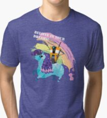 BELIEVE IN YOUR DREAMS! Tri-blend T-Shirt
