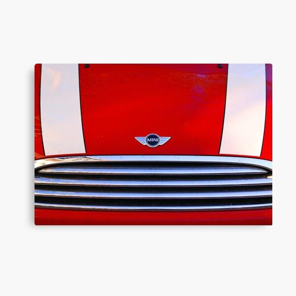 mini red Canvas Print