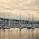 Howth Harbour by Michelle McMahon