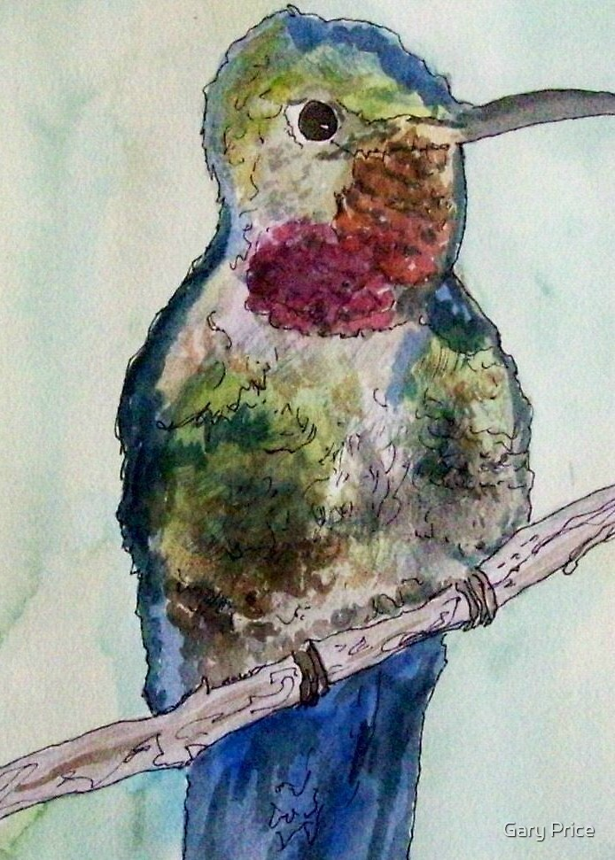 Hummingbird by Gary Price