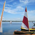 Traditional wooden boats at the Buffalo Maritime Center's Small Craft Festival by Ray Vaughan