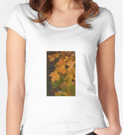 Fall Leaves iPhone case Women's Fitted Scoop T-Shirt