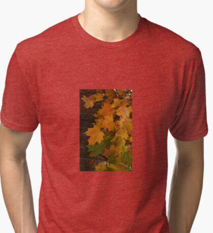 Fall Leaves iPhone case Tri-blend T-Shirt