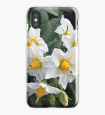 Blossoms White And Yellow Garden Blossoms iPhone Case