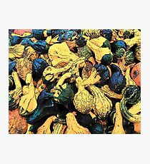 Gourds Photographic Print