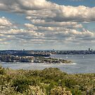 Sydney Pano - South Head to CBD by Jason Ruth
