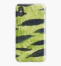 Impression Water Reed Minnows iPhone Case