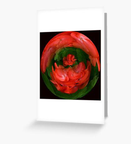 Red Geraniaum #1 Greeting Card