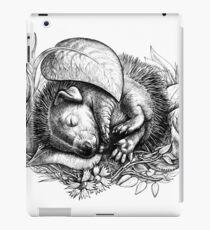 Baby hedgehog sleeping iPad Case/Skin